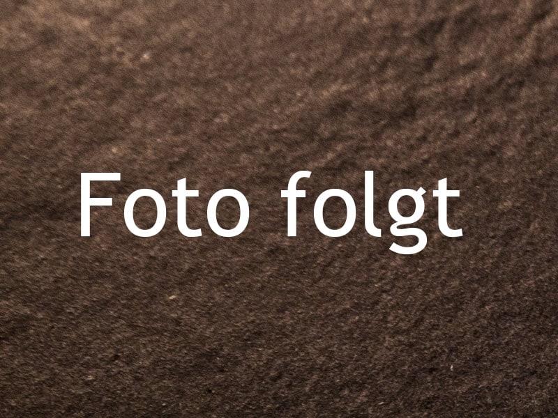 BUTTERSTOLLEN | detail kuerbiskernbrot foto