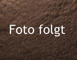 ZZZ*VORLAGE - MEHLSPEISEN - klassisch ROT (mit CF) | uebersicht kuerbiskernbrot foto folgt